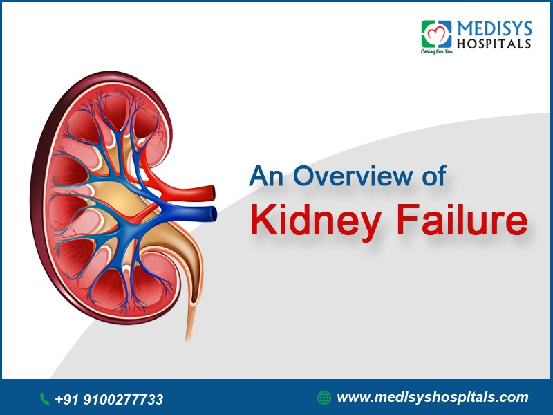Kidney Failure Treatment in Hyderabad
