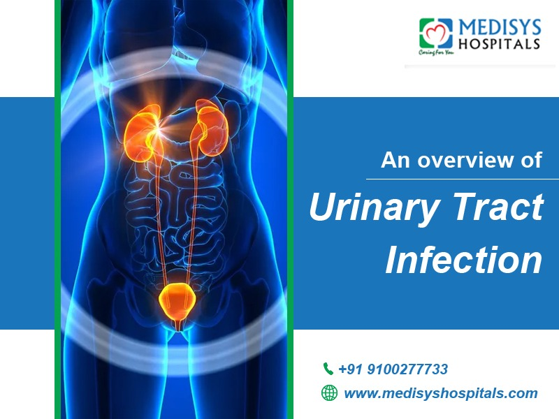 An Overview of Urinary Tract Infection